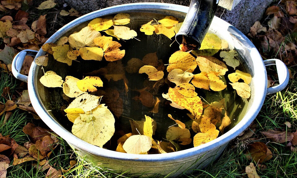 HOW TO COLLECT RAINWATER FOR GARDENS