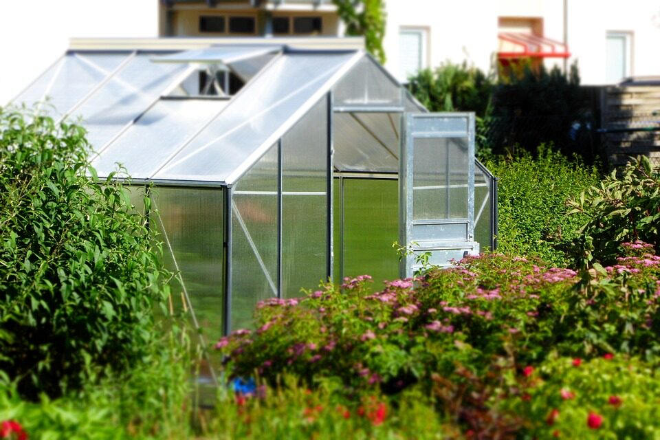4 QUICK AND EASY GREENHOUSE KITS: A GUIDE AND REVIEW