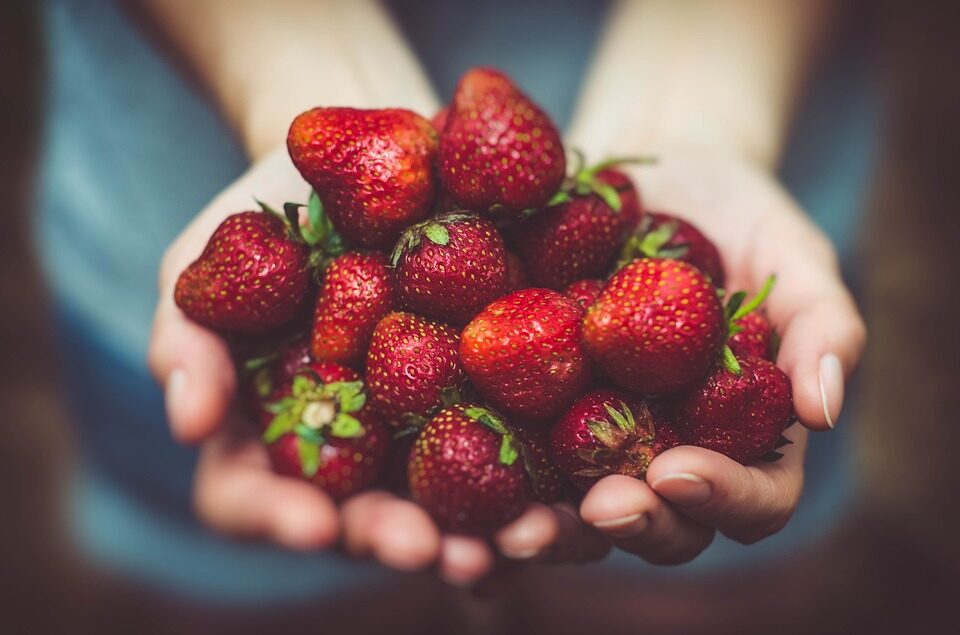 GROWING STRAWBERRIES: A QUICK GUIDE